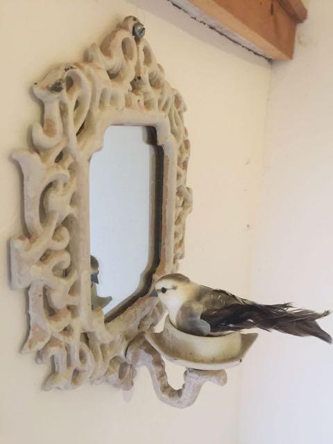 vogelkamer 3